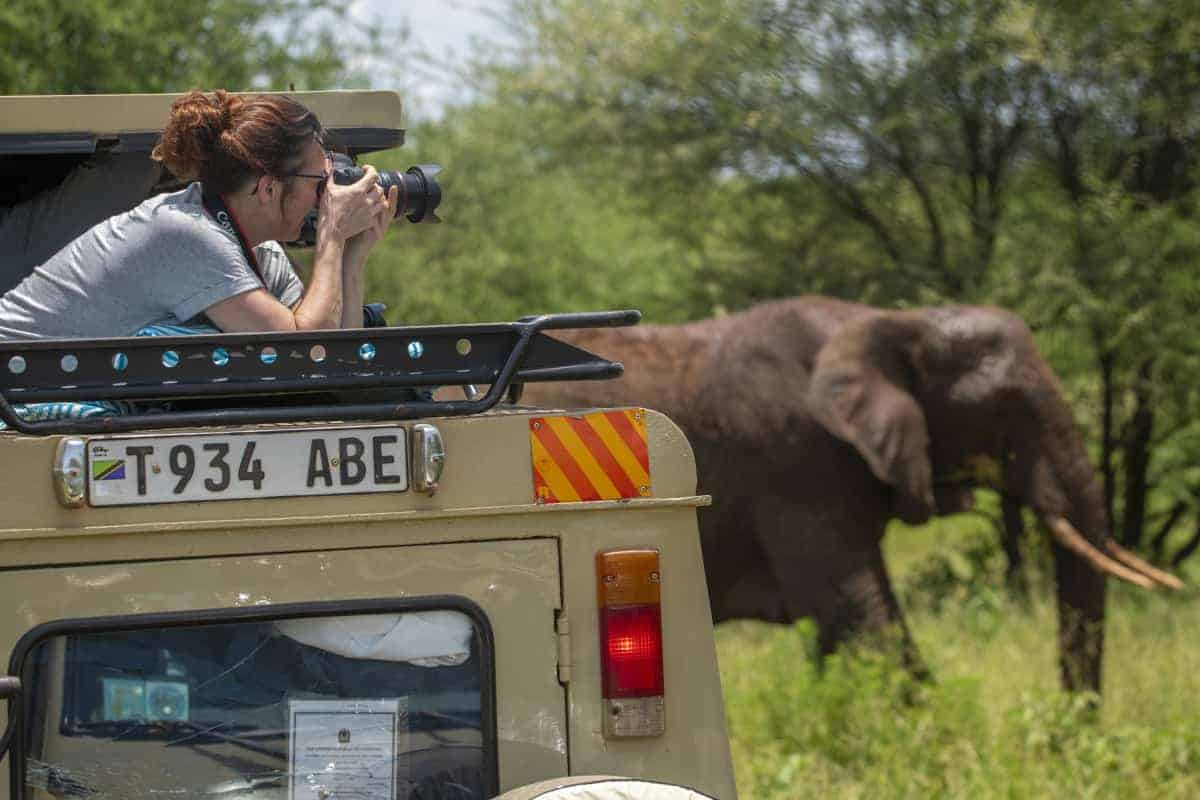 Deelnemer fotografeert olifant vanuit de Jeep tijdens fotosafari Tanzania