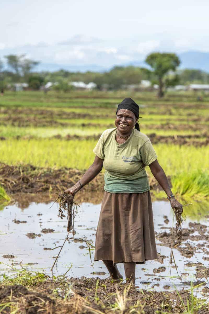 Werken op het veld Fotoreizen Afrika Tanzania