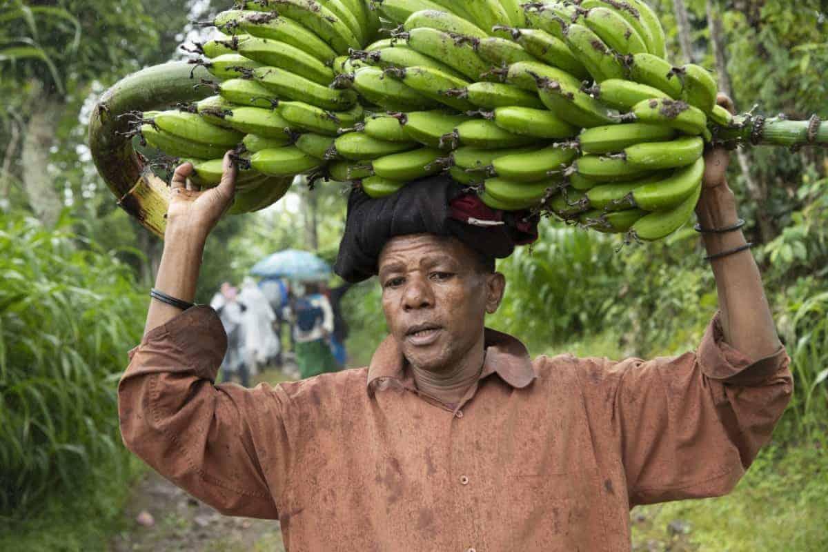 Fotoreis Tanzania - Man met bananen op zijn hoofd