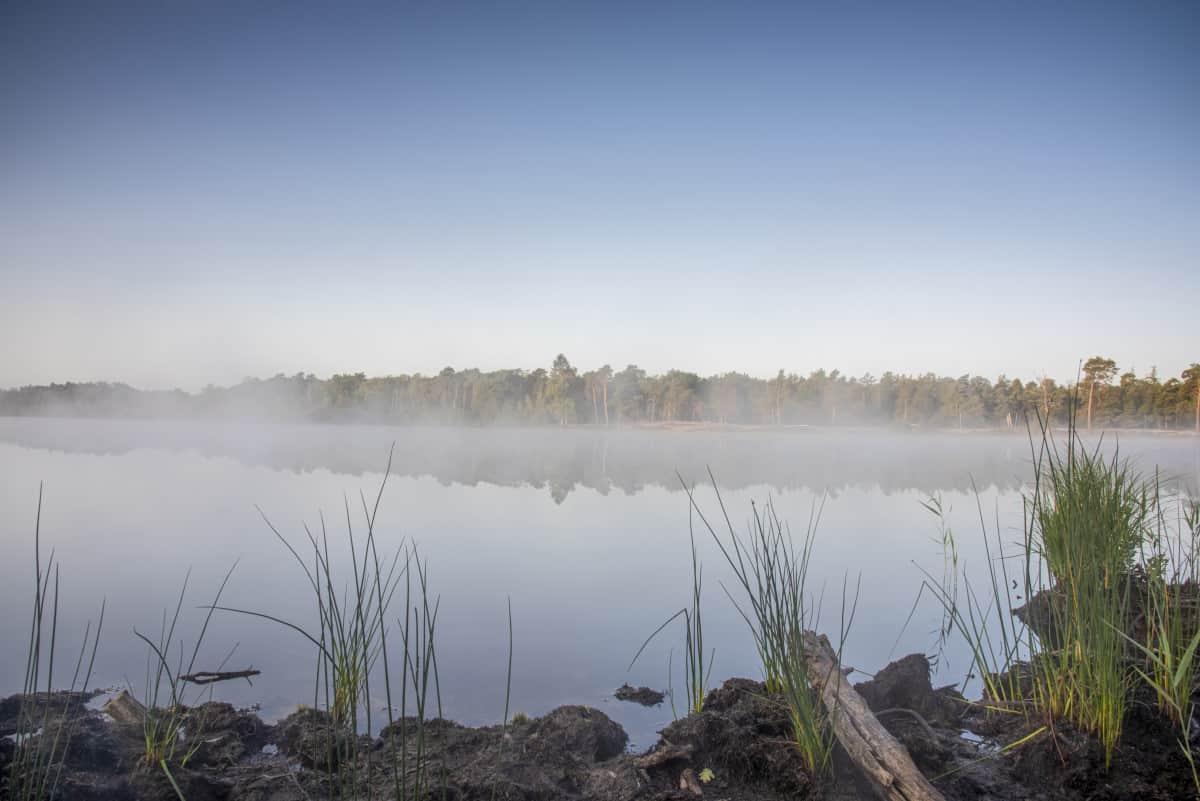 Fotoweekend Brabant ochtendmist