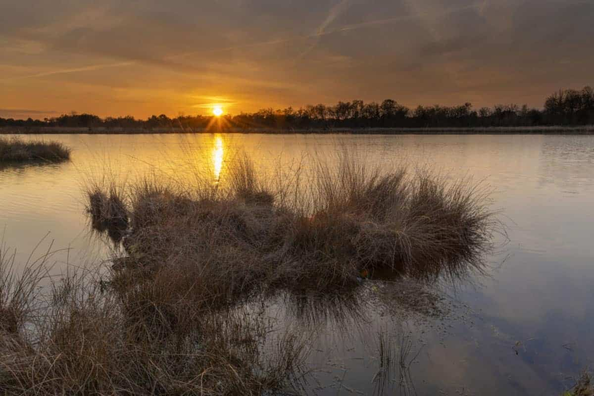 Zonsondergang Kogelvangersven Fotoweekend Brabant
