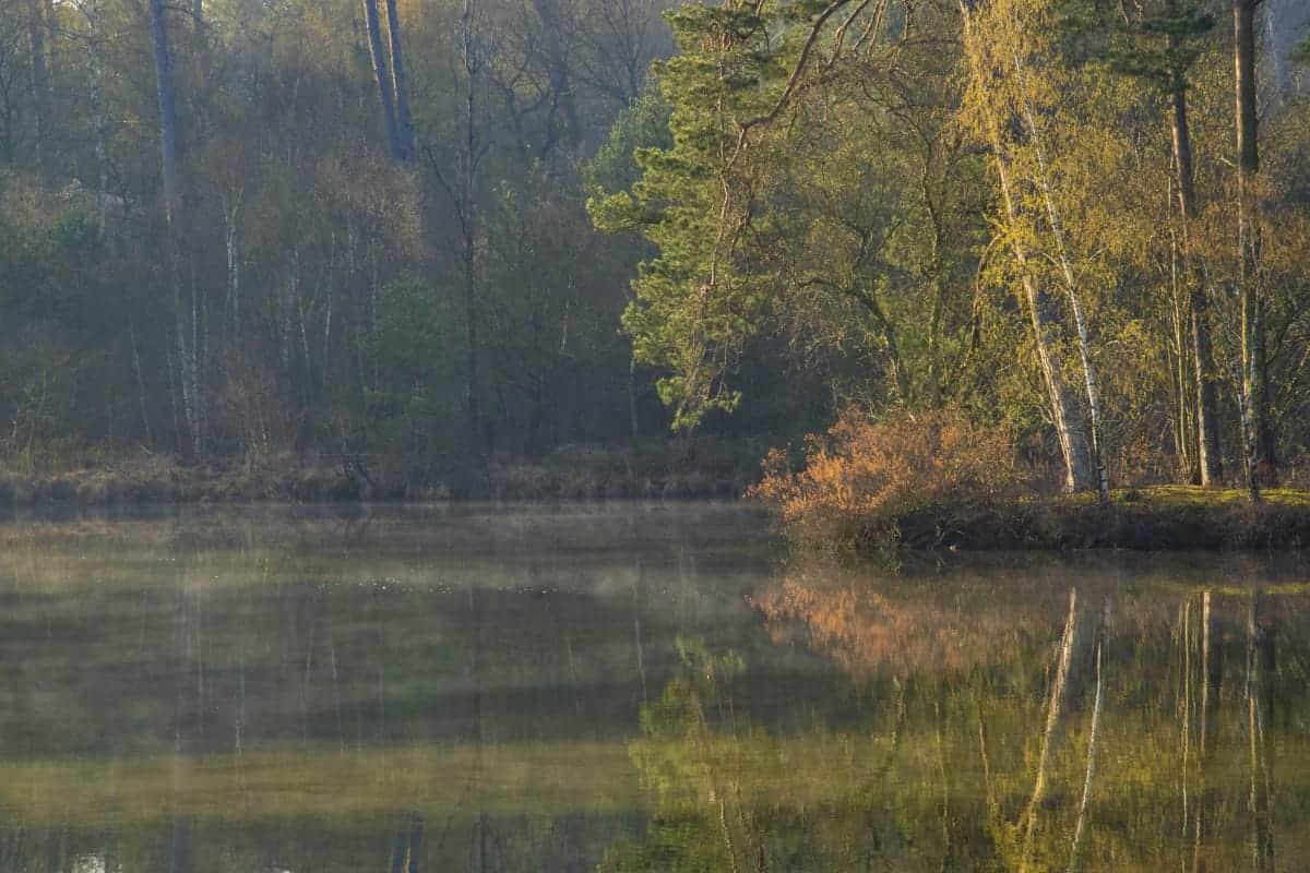 Fotoweekend Brabant ochtenden Van Esschenven