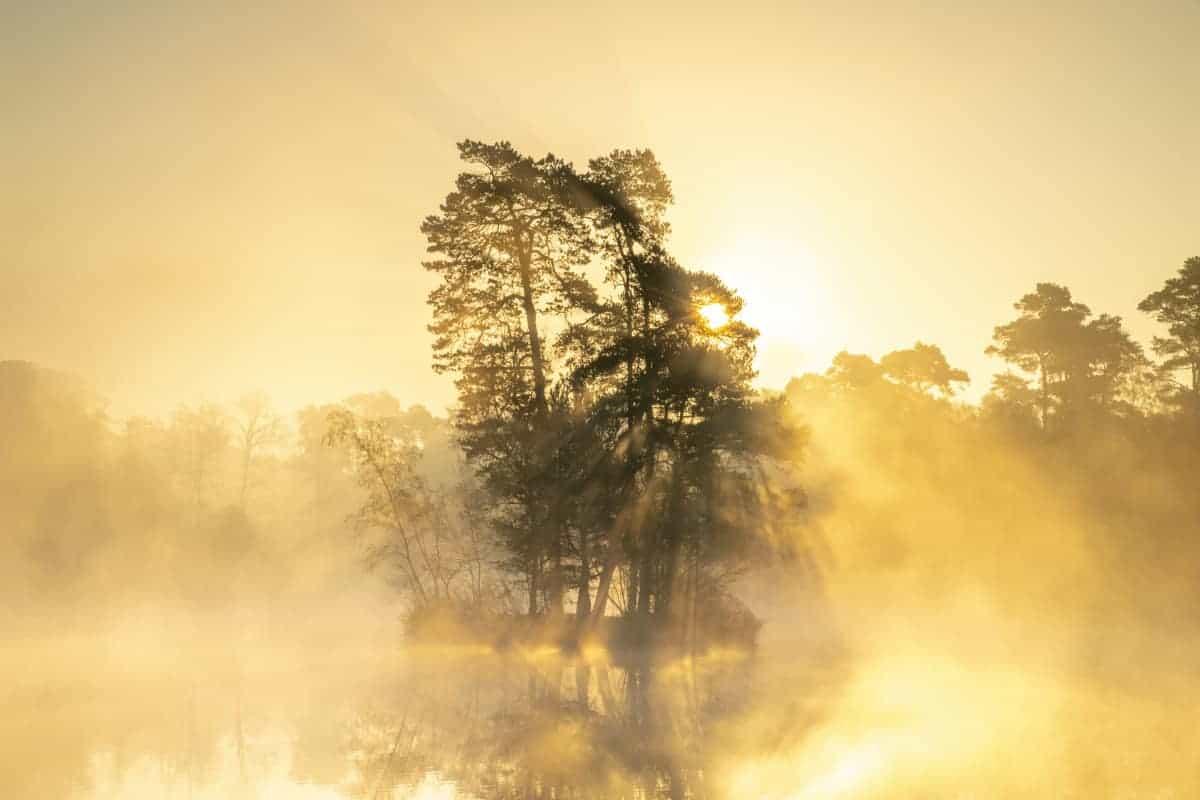 Fotoweekend Brabant Van Esschenven in ochtendnevel