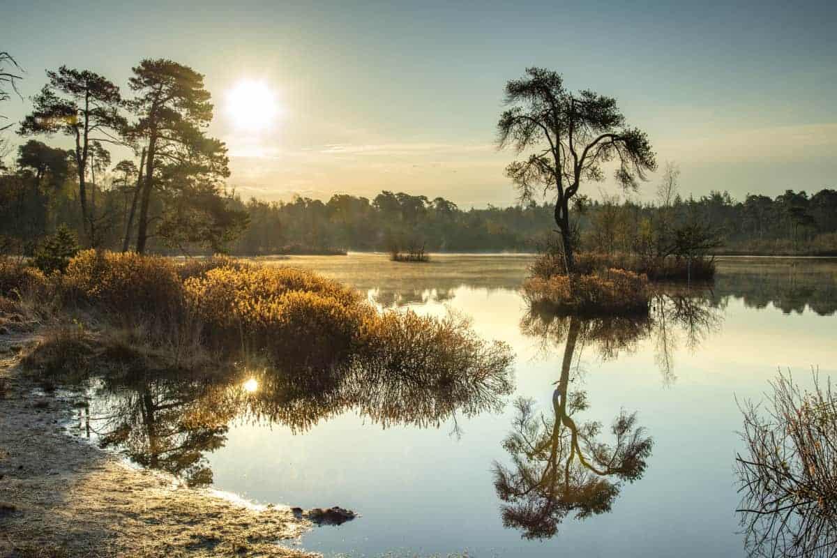 Fotoweekend Brabant Voorste Goorven bij zonsopkomst