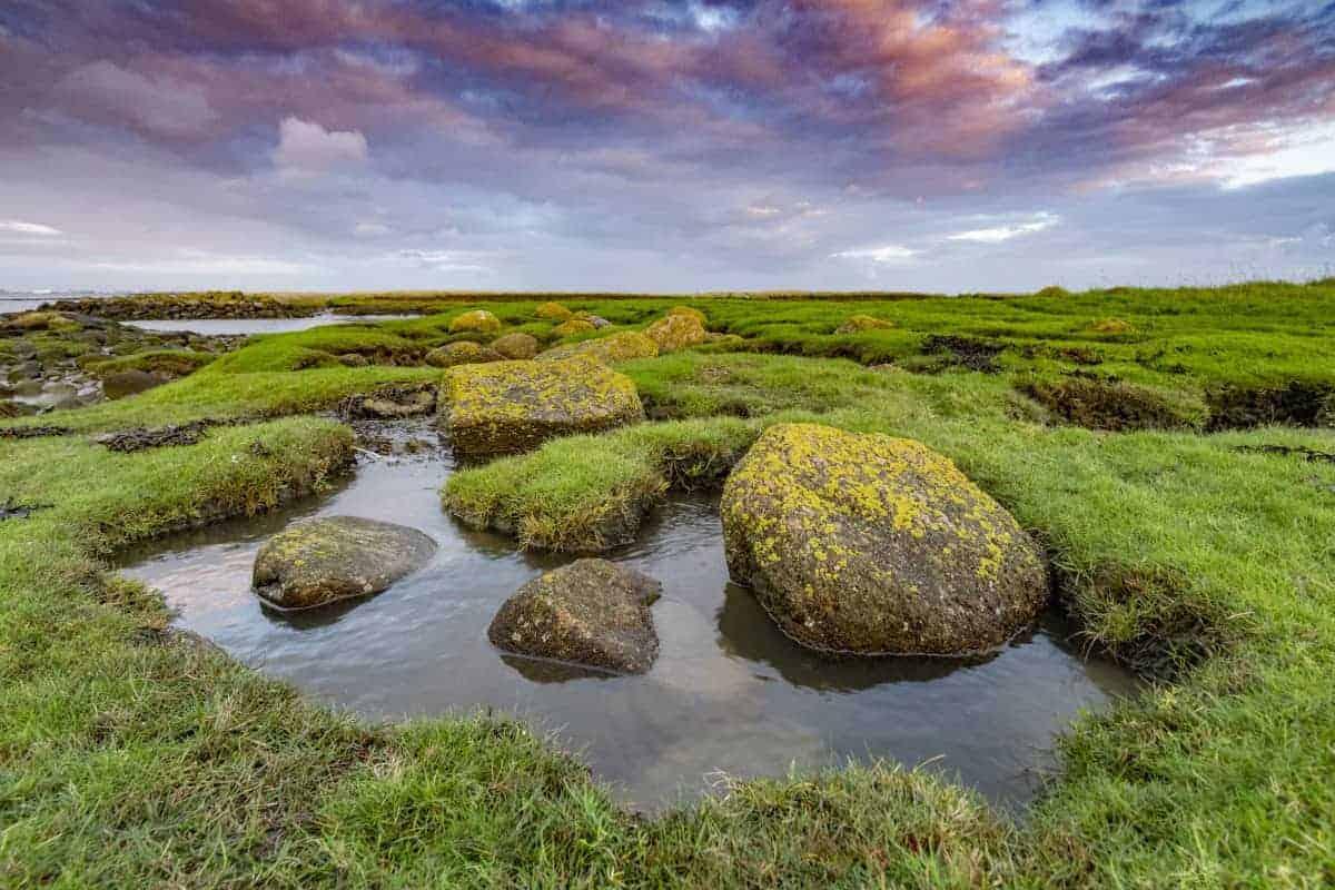 Punt van Reide Fotoreizen Nederland