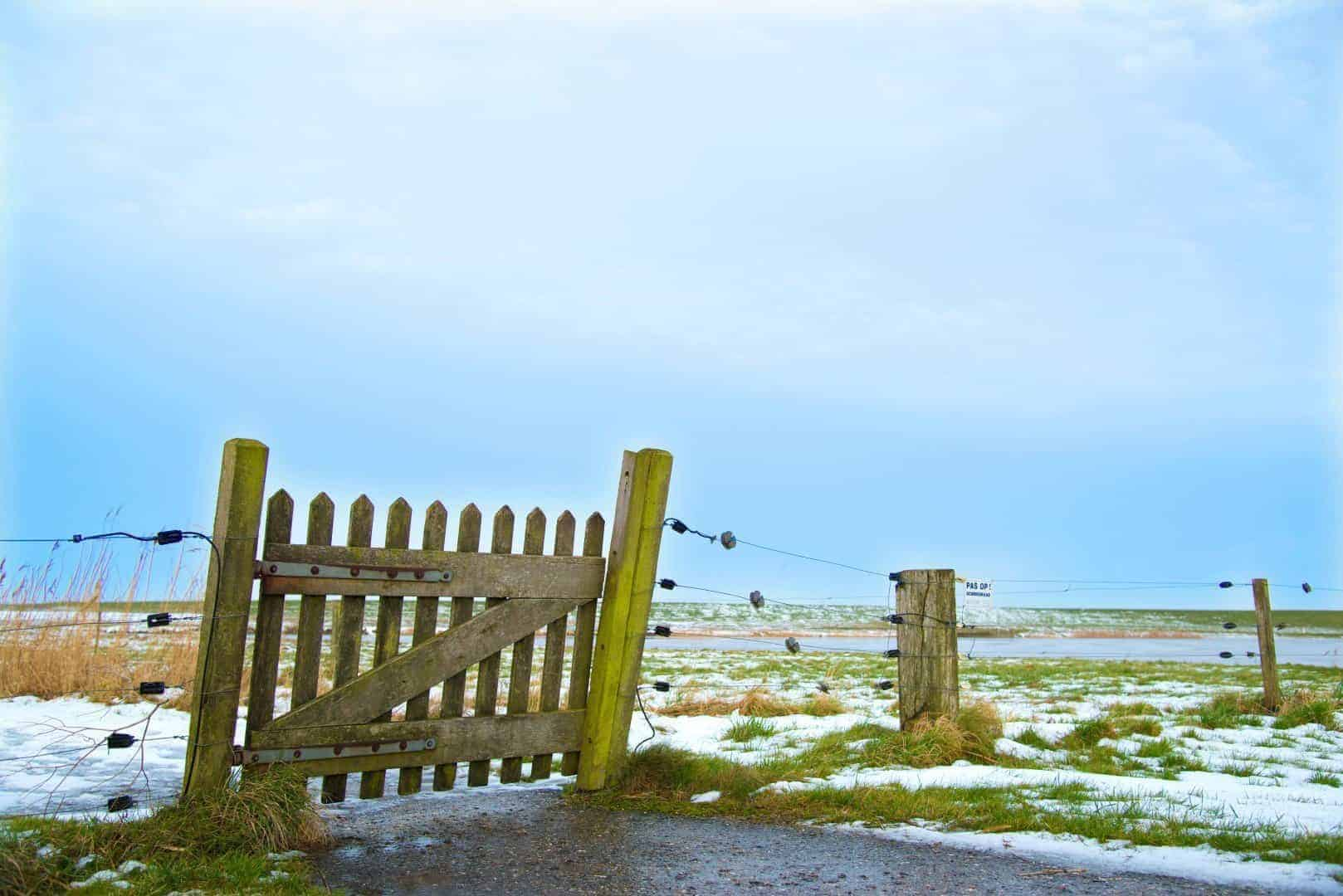 Hekje in de winter in Termunten - Winterfotografie