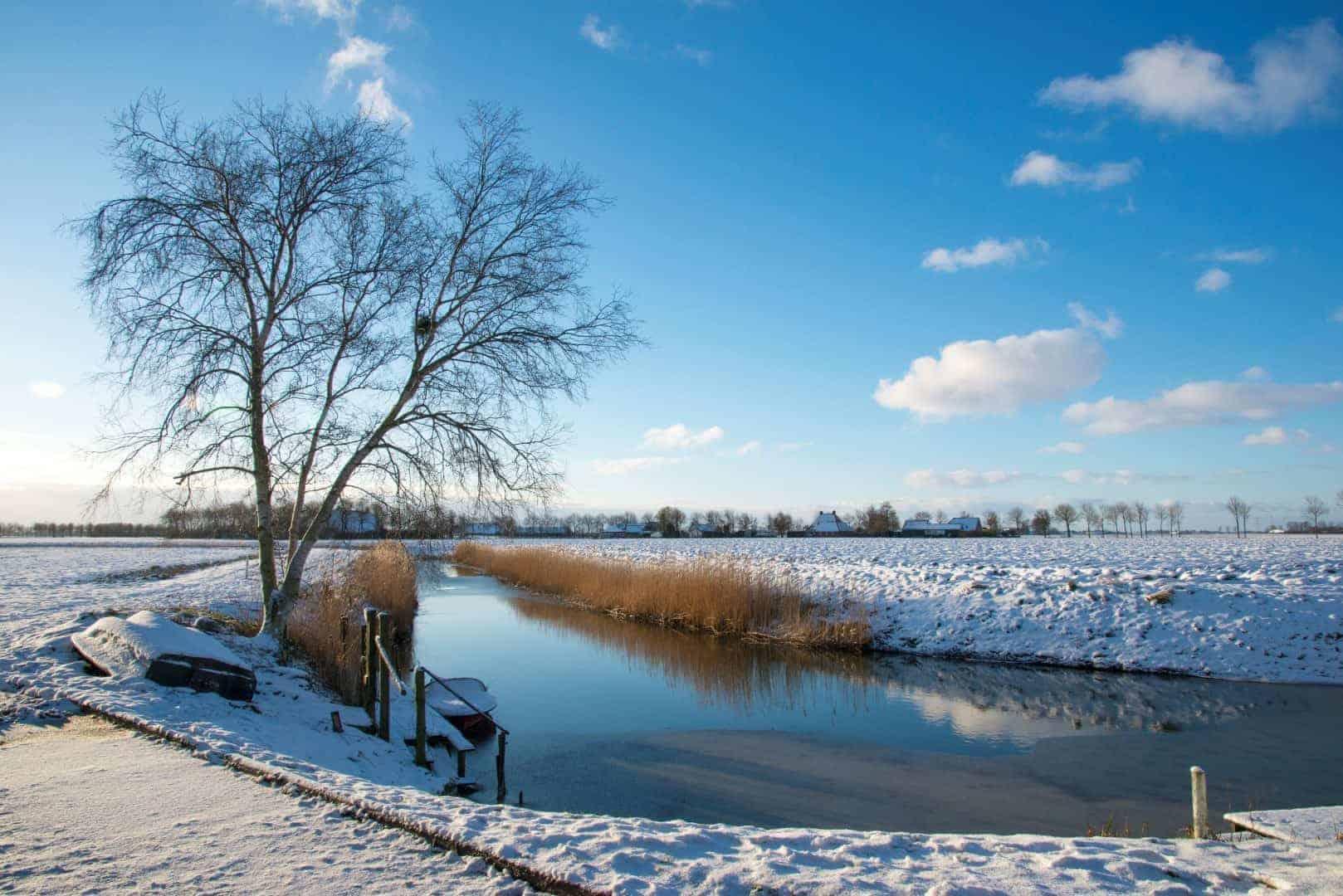 Winterlandschap bij Bierum met een watertje op de voorgrond.
