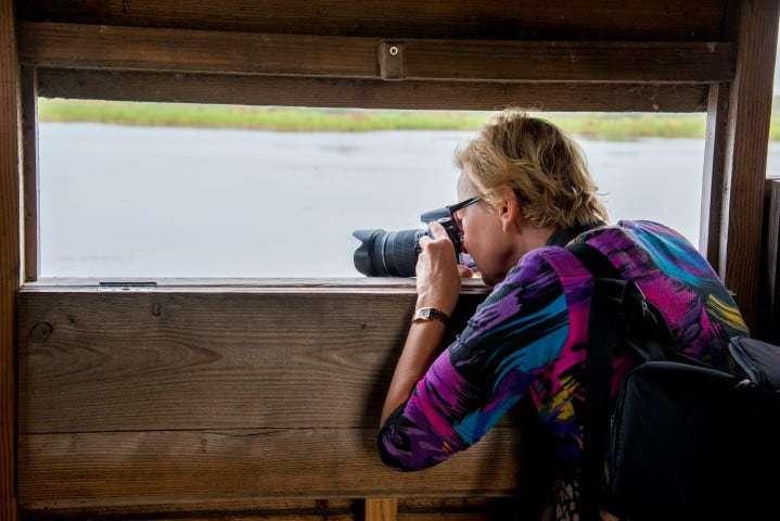 Deelnemer fotoweekend Ameland fotografeert vogels vanuit kijkhut | Fotografie-reizen - Fotoreizen